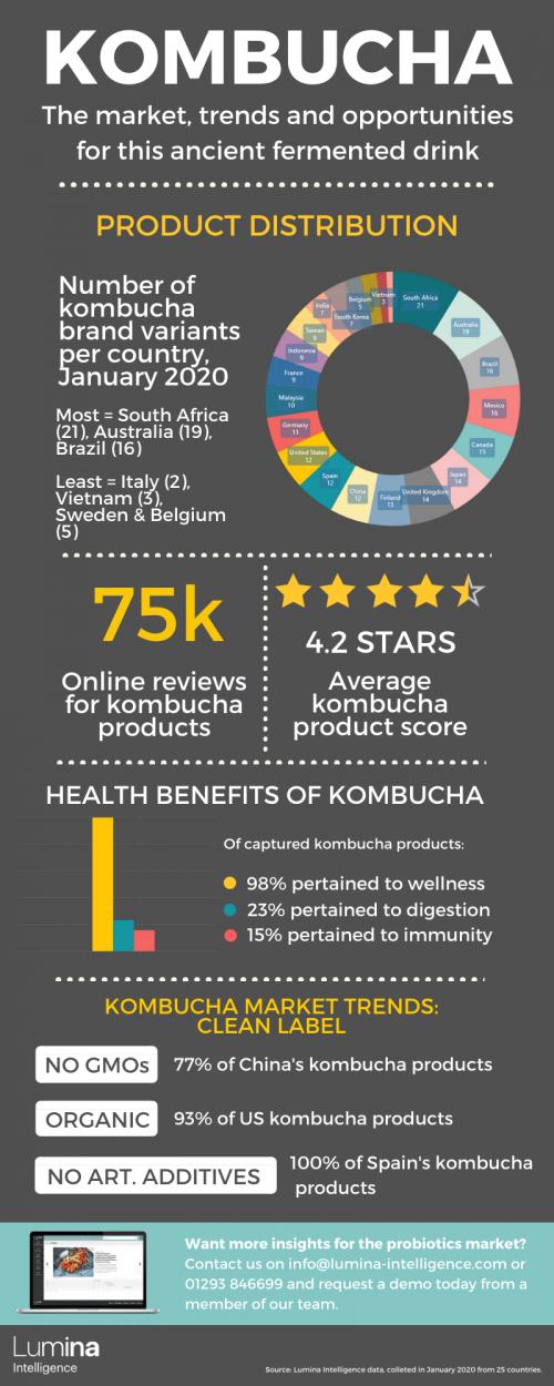 Global Kombucha Market Infographic