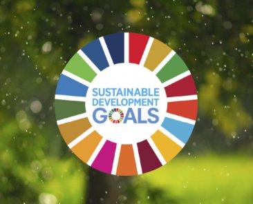 SDGs main image