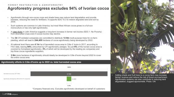 Deforestation report preview slide