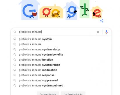 Above: Google predictive search