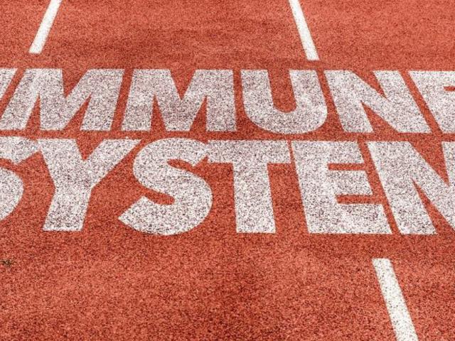 Immunity report cover